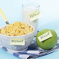 fogyókúrás étrend ingyen